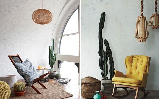 foto-cactus-grandes
